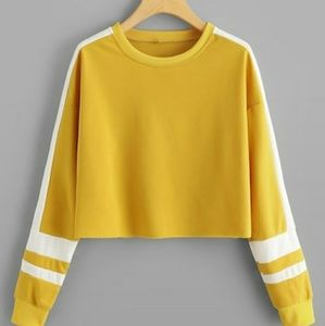 Gold & White Colorblock Crop Long Sleeve Top